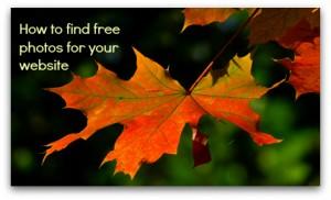 free_photos_for_website